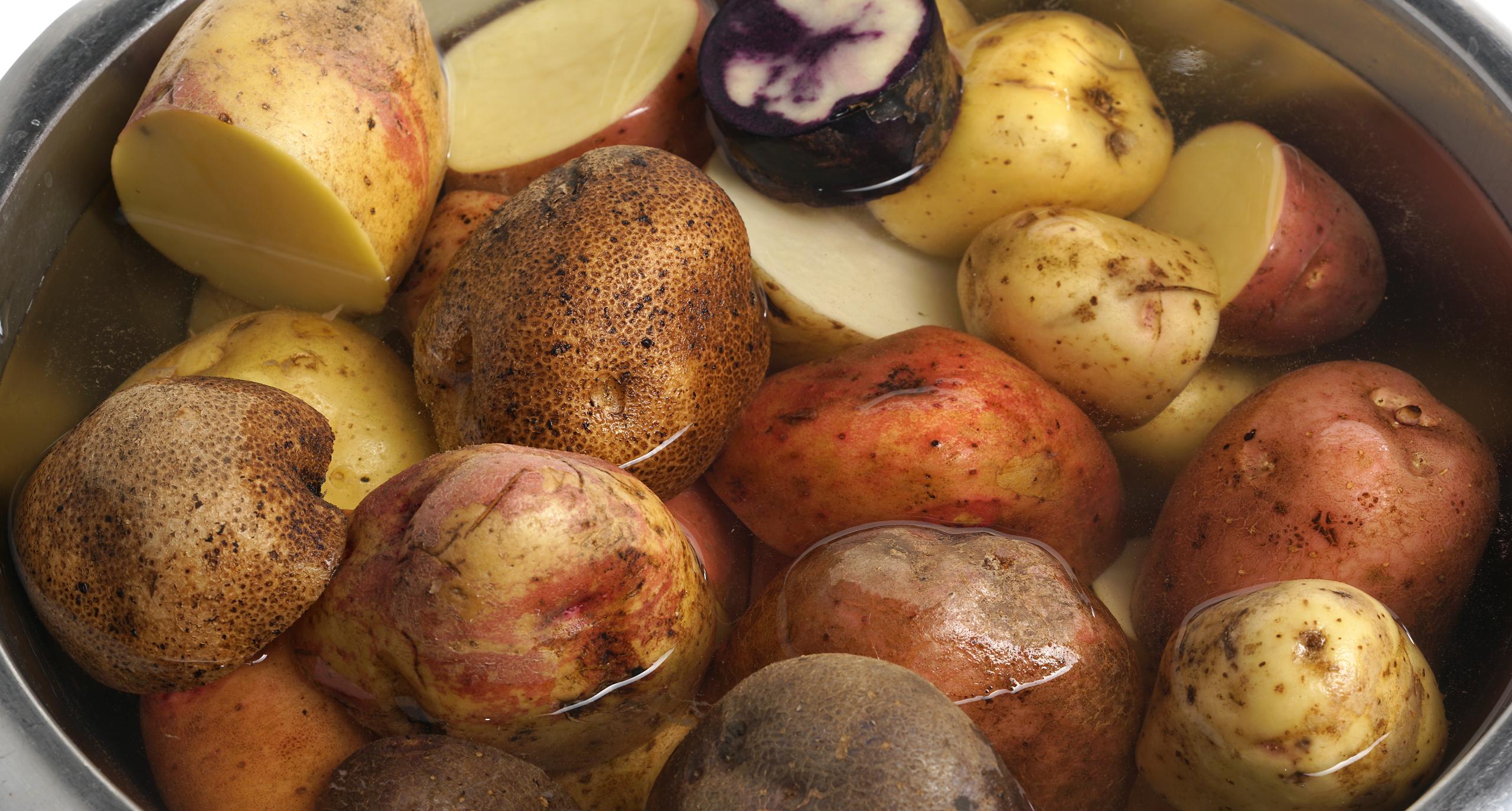 Как правильно выбрать хороший и вкусный картофель